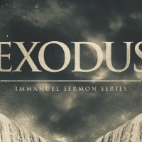 5 Great Exodus Commentaries