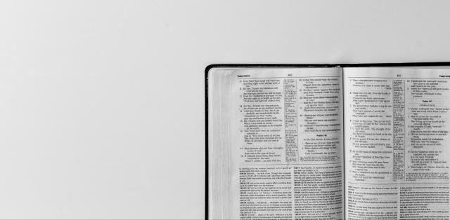 bible-grey-e1559221160369.jpg